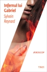 Infernul lui Gabriel (seria Infernul lui Gabriel, volumul 1) - Sylvain Reynard